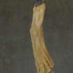 'Helena 2' Kieta Nuij beelden in brons